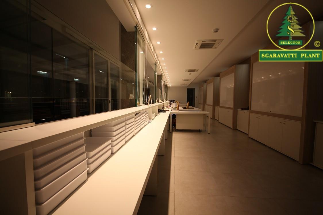 Sgaravatti plant contattaci azienda illuminazione a led di
